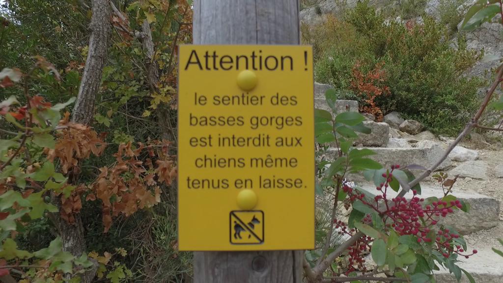 sentier interdit aux chiens